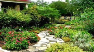 jardinería con pasillo